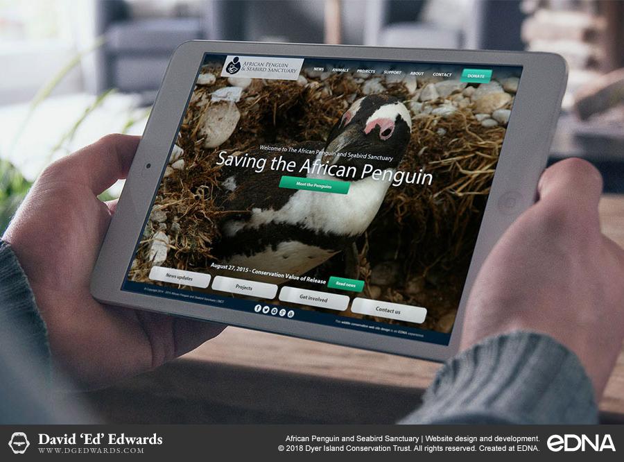 African Penguin and Seabird Sanctuary website design