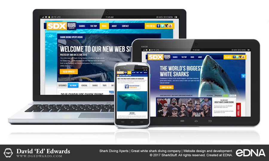 Shark Diving Xperts website