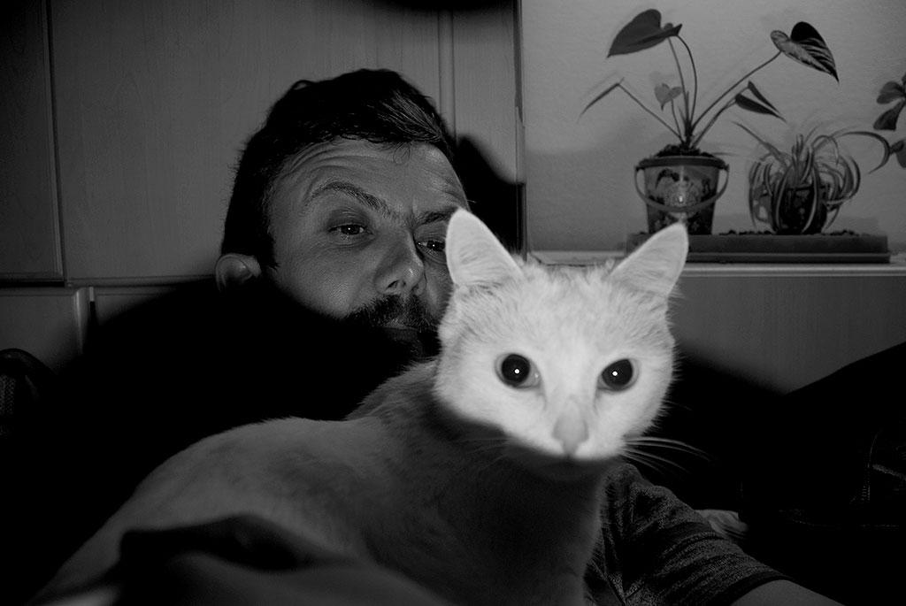 The cat returns.