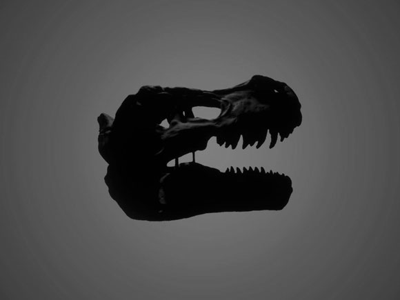 T-Rex Skull – Laser Scanning v Close Range Photogrammetry
