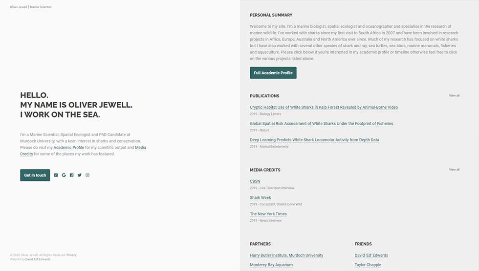 Oli's professional summary on the homepage