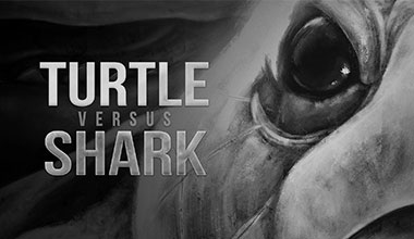 Learn more about Turtle vs Shark