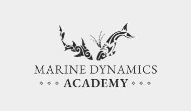 Learn more about Marine Dynamics Academy